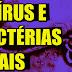 EBOLA, VÍRUS E BACTÉRIAS LETAIS | LENDAS E MISTÉRIOS