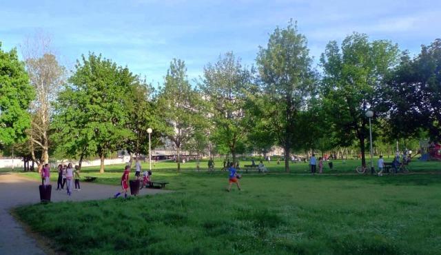 Devastacija parka u Savici