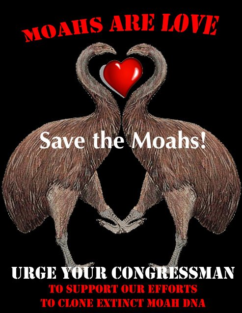Save the Moa!