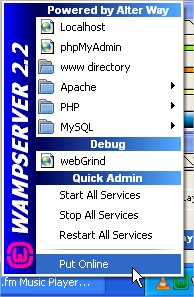 Wamp Server Put Online