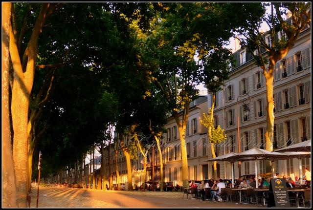 Avenue de Paris à Versailles