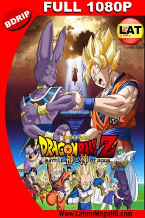 Dragon Ball Z: La Batalla De Los Dioses (2013) Latino Full HD BDRIP 1080p ()