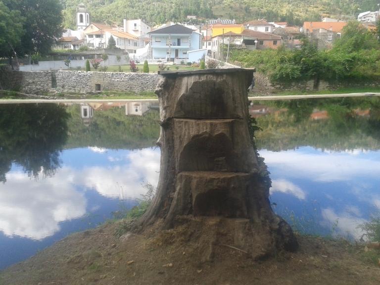 Tronco de árvore que serve de prancha de saltos