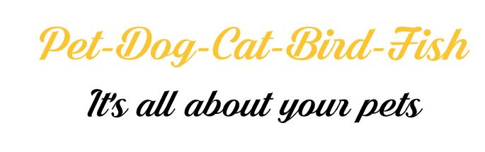 Pet-Dog-Cat-Bird-Fish