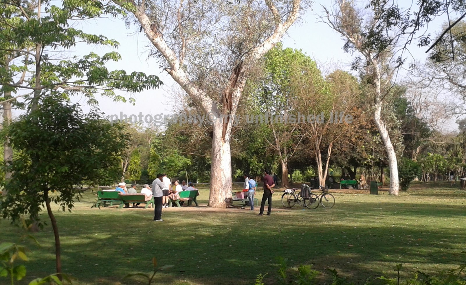 Lodhi Garden Delhi Scenes From A Sunday Morning Walk