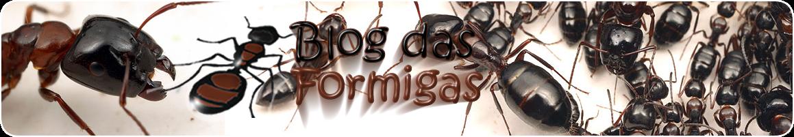 Blog das Formigas