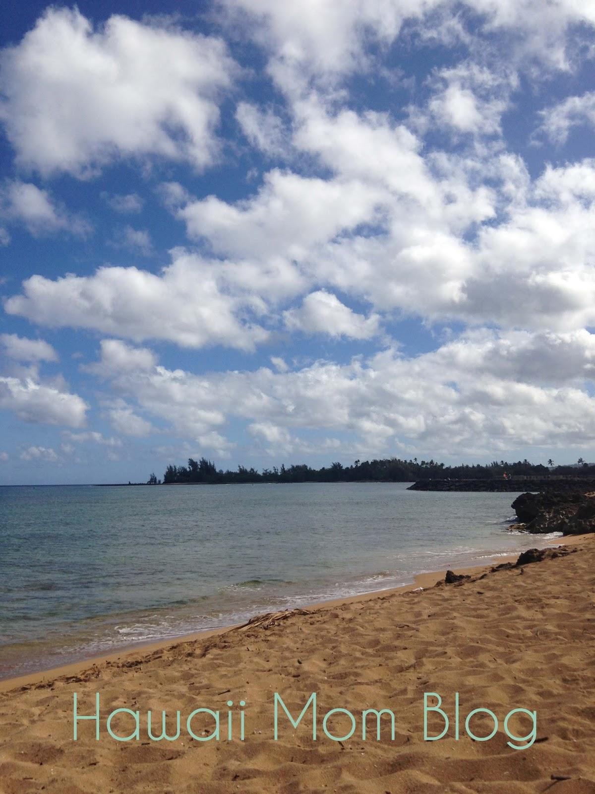 Haleiwa Ali I Beach Park Turtles