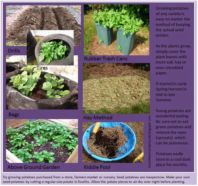 Southern California Garden Guide Basic Gardening