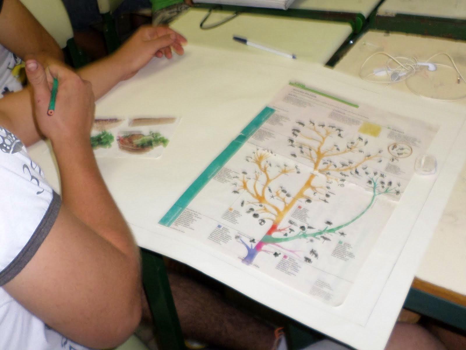Cartaz sobre Biologia