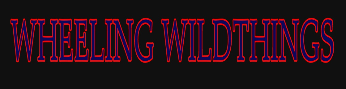 Wheeling Wildthings Baseball