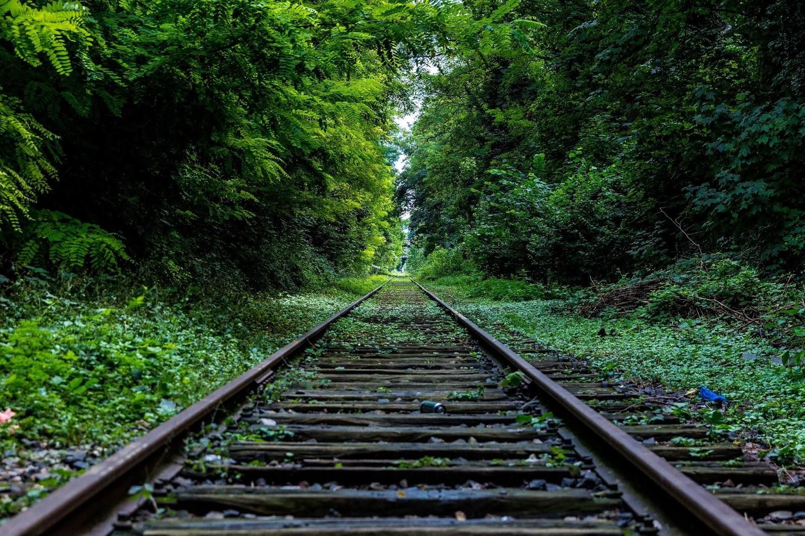 Sele 231 227 o de imagens com ferrovias trens e suas antigas esta 231 245 es