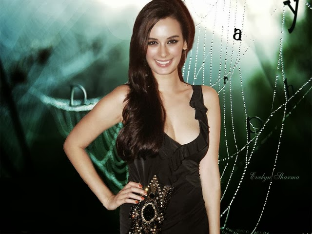 Evelyn+Sharma+Hd+Wallpapers+Free+Download014