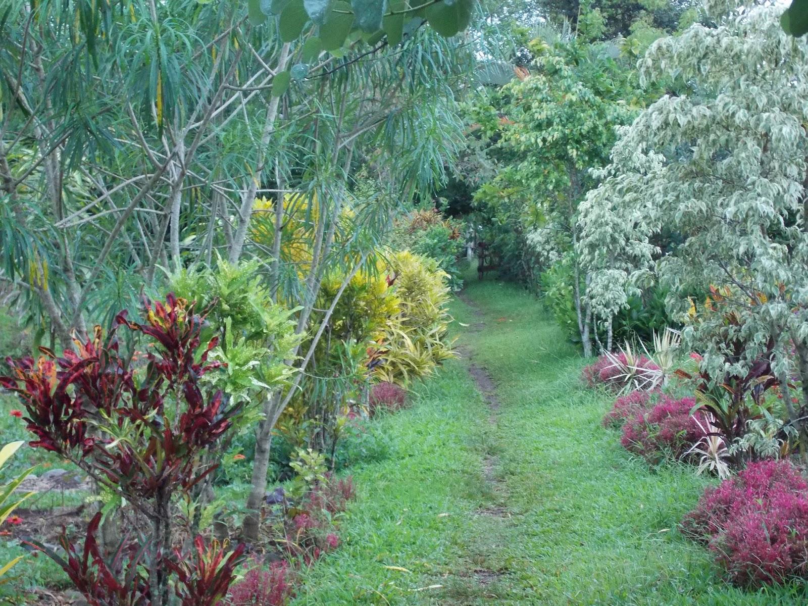 Vista del Jardín Botánico Xoyoquila