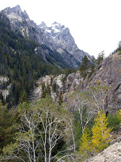 Open Air and Sunshine: Grand Teton National Park