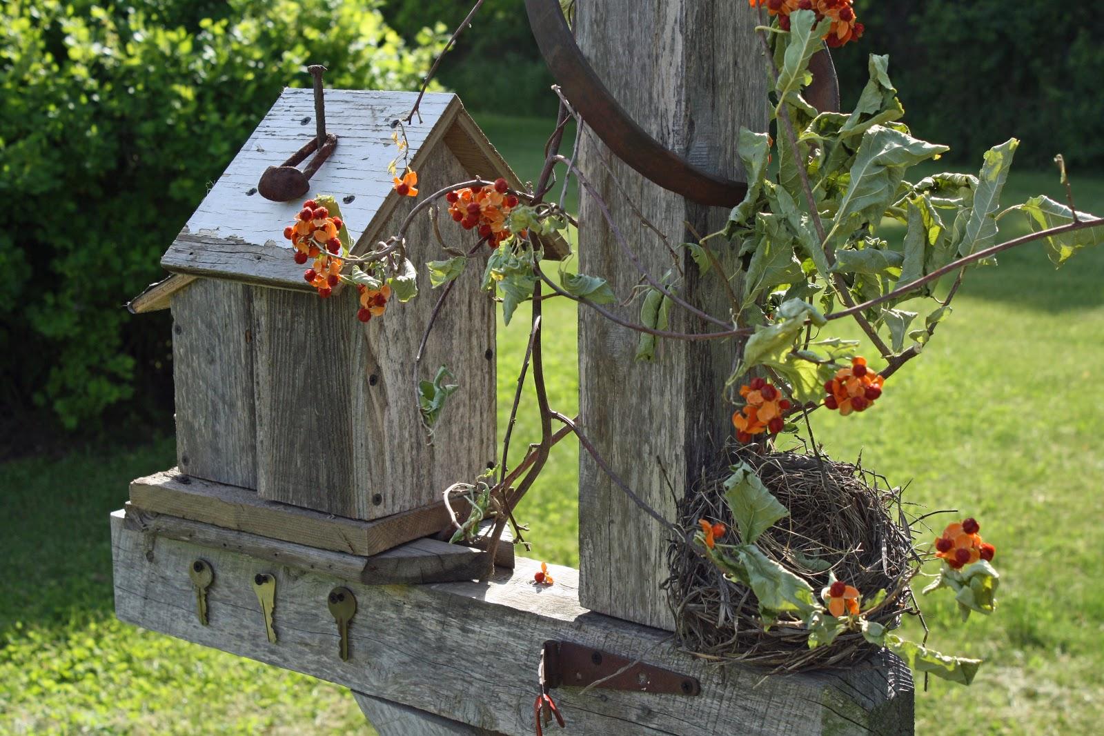Outdoor Garden Junk Ideas Photograph Dragonflys And Stars