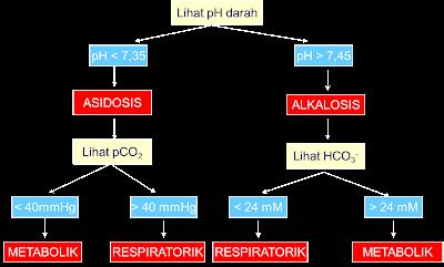 Interpretasi asam basa/ AGD (Analisa Gas Darah)
