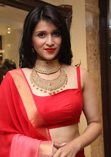 Mannara Chopra Sizzling Red Sleeveless Choli Gorgeous Golden Necklace Transparent Red Saree Stunning Beauty