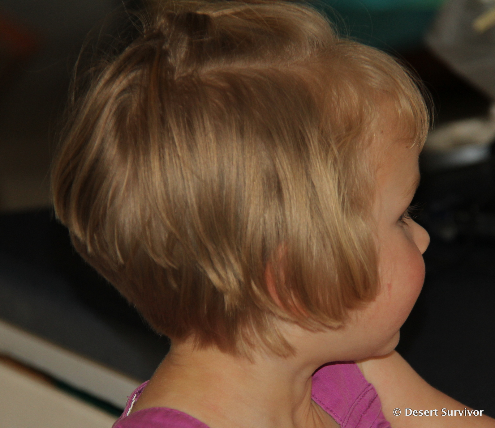 Toddler pixie haircuts