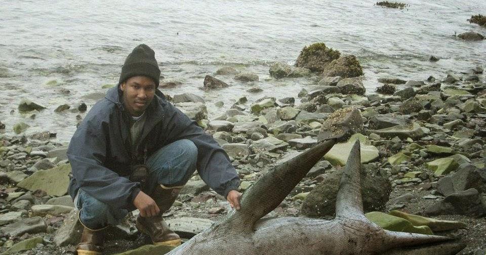 Dangerous news lago di garda immigrato trova pliosauro for Grosso pesce di lago