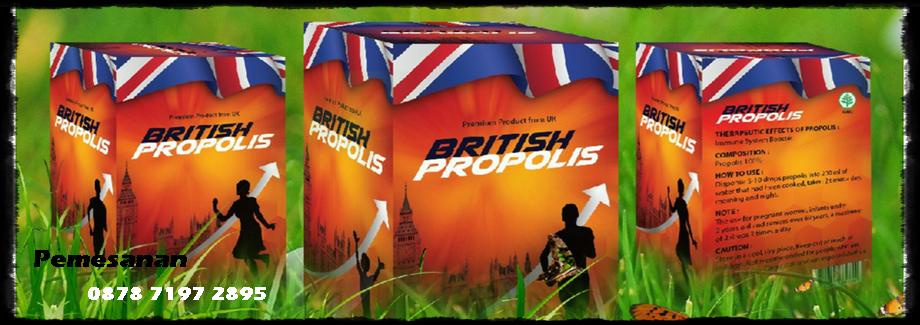 Agen Propolis, Distributor Propolis, Jual Propolis British, Jual Propolis Di Banten