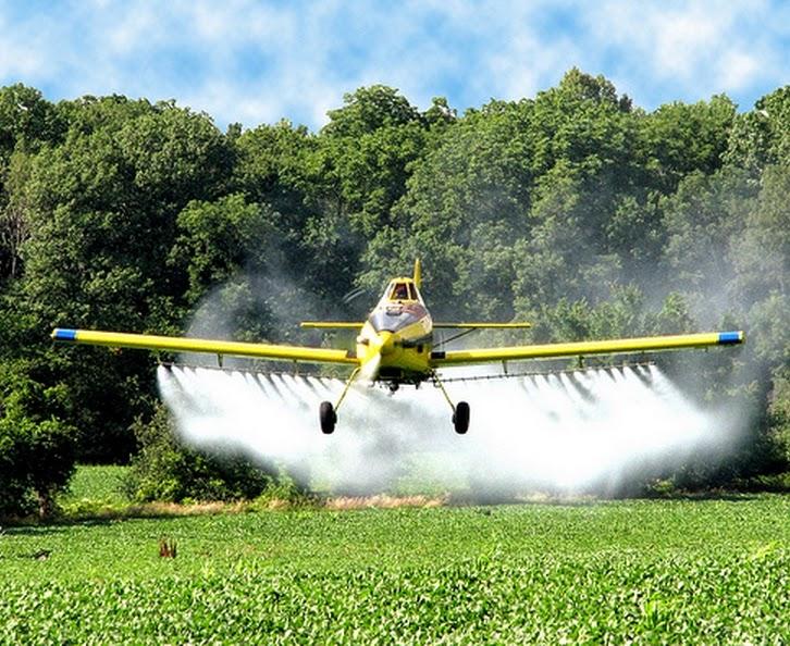 Brasil lidera consumo de agrotóxicos no mundo e Inca pede redução do uso