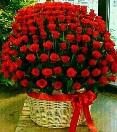Rosas com Amor!...
