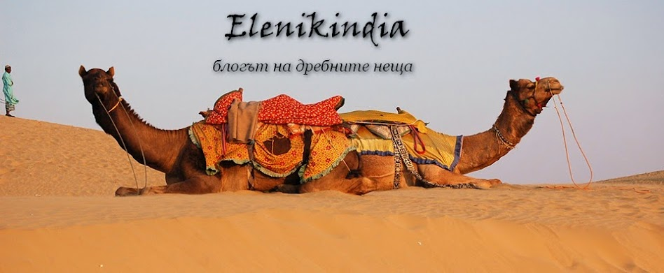 Elenikindia