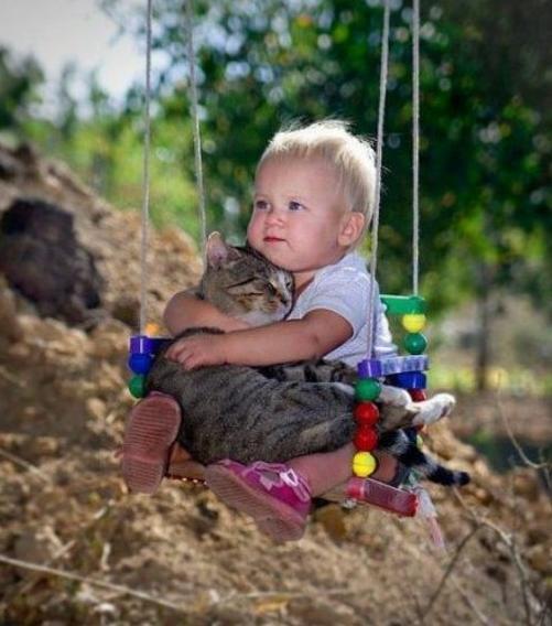 menino e gatinho lindos fofo fotos tem como nao amar eu adoro morar na internet