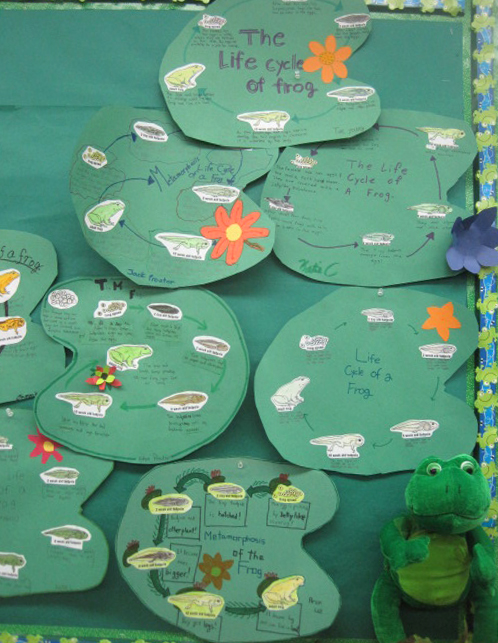 Student-Made Frog Posters for Science