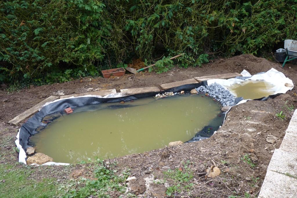 Le jardin de triton pi ce d 39 eau au jardin 2 3 - Petit bassin d eau dijon ...
