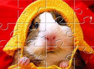 Puzzles de Animais
