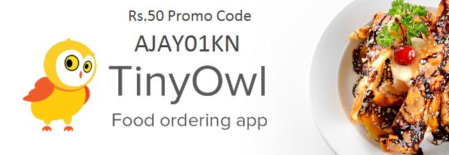 TinyOwl Promo Code