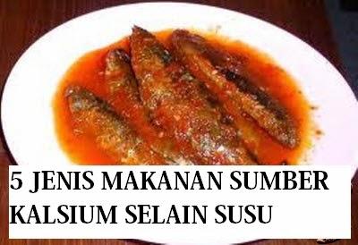 5 Makanan Sumber Kalsium Selain Susu