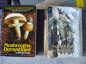 https://www.goodreads.com/list/show/7042.Mushrooming#415949