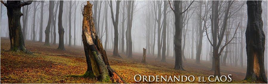 Ordenando el caos - Oscar Peña Fotografía