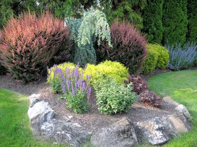 guide  northeastern gardening june