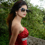 Monica Singh hot hd wallpapers
