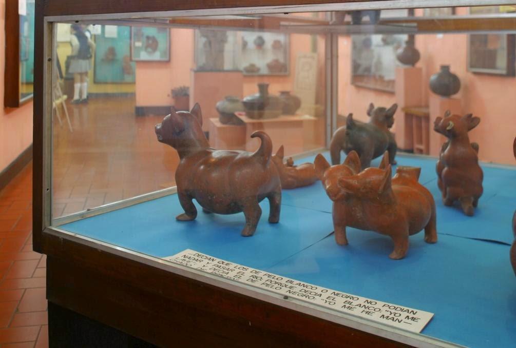 Museo de Arqueología de Accidente, Guadalajara