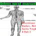 Koordinasi Badan - Nota Sains Tingkatan 4 Bab 2