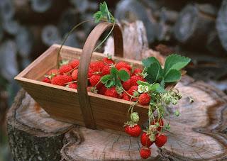 cestas de fresas