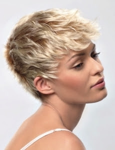 New Trend Of pixie Hair Cuts ideas For Summer 2011