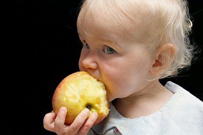 El bebe y la alimentacion 9 meses - Alimentos bebe 8 meses ...