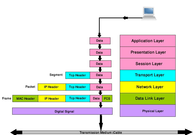 Networking Gurus  How Does The Osi Model Function
