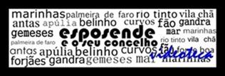 ESPOSENDE E O SEU CONCELHO - VIDEOTECA