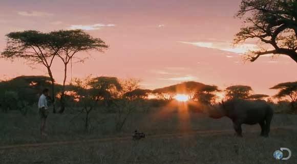 Black Rhino Standoff