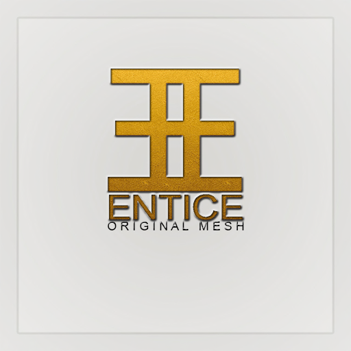 Blogger for Entice