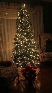 Day 98 - December 1, 2011