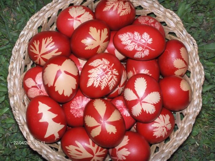 Bucataria Alynusei: Oua rosii