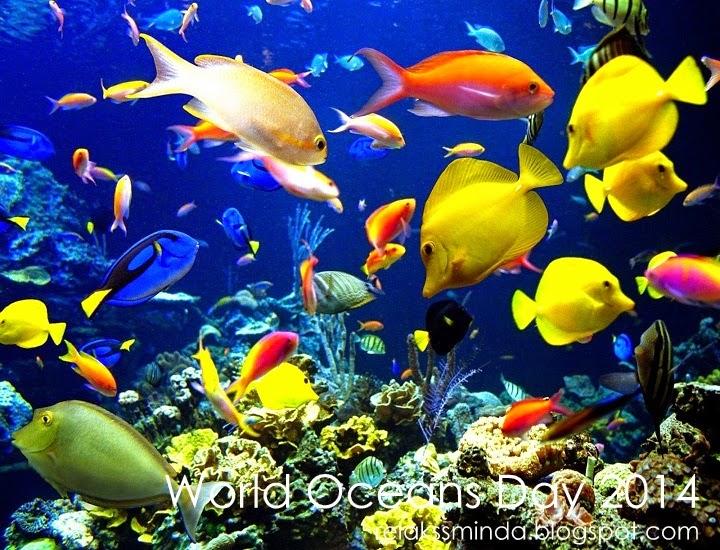 Hari Lautan Sedunia - World Oceans Day
