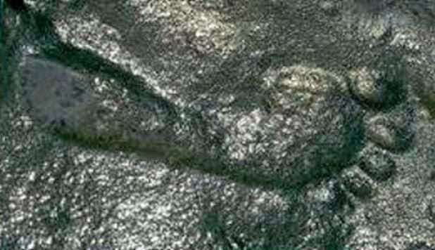 290 Million Year Old Human Footprint Found In New Mexico